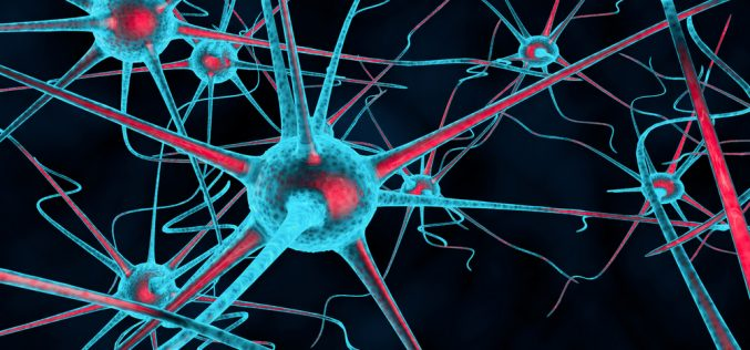 Unexpected mechanism behind chronic nerve pain