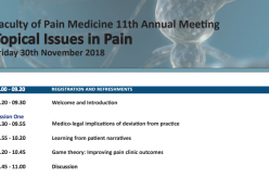 30 November 2018, FPM 11th Annual Meeting: Topical Issues in Pain; London