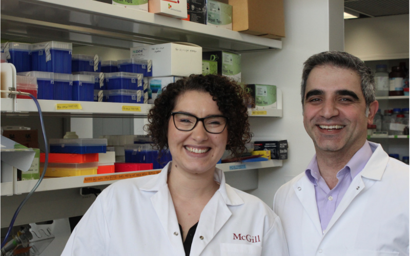 McGill researchers end decade-long search for mechanical pain sensor