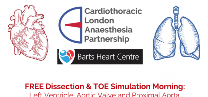 30 September 2021, Free dissection & TOE simulation morning; London